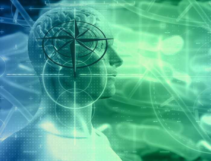 le magnétisme chez les êtres humains